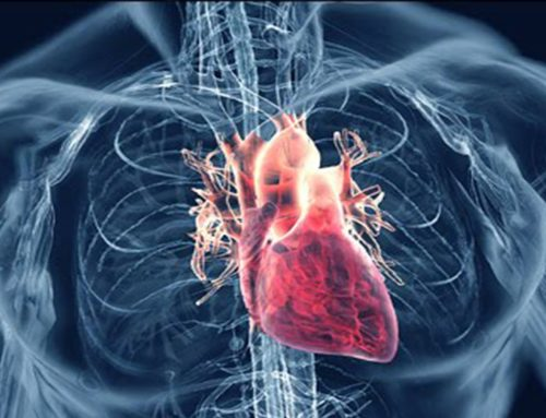 Emerging Technology In The Fight Against Heart Disease