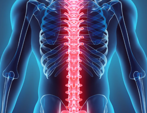 3 Things Everyone Needs To Know About Their Spine